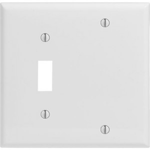 2-gang Toggle & Blank Wallplate, Standard