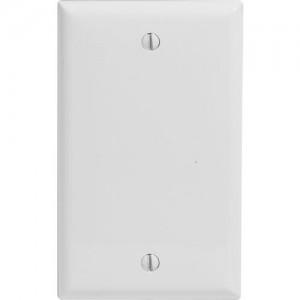1-gang Blank Wallplate, Standard